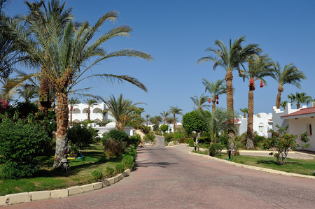 sinay: Hotel. Sharm-El-Sheikh. South Sinay. 30 june 2014