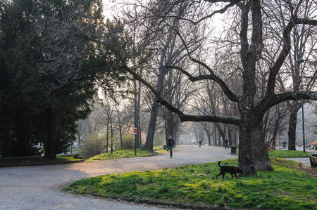 evenings: MILAN, ITALY - MARCH 19, 2015: On the streets of the city. Evenings park Editorial