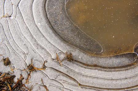 ice crust: Frozen thin crust of ice on the ground. Stock Photo