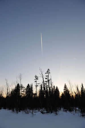 morass: High flying plane. The view from the swamp in the winter taiga.