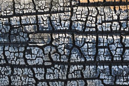 burnt wood: Close-up background of burnt wood