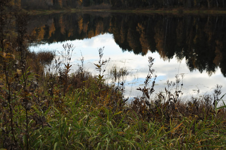 Landscape view to the forest lake in the middle of autumn. Stock Photo