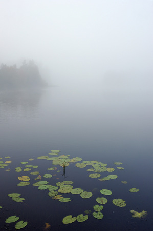 Early autumn morning. Dense fog envelops the surface of the river. Imagens