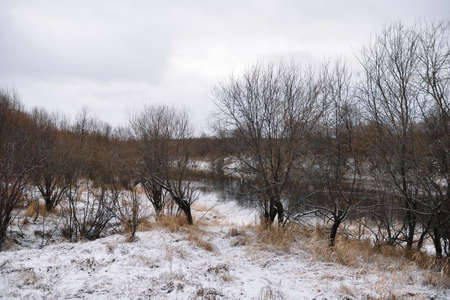 Trees near the river in late autumn with dry grass and the first snow. Scenic view. Banco de Imagens
