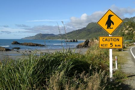 Penguins crossing sign in rural New Zealand, South Island Stock Photo - 2182422