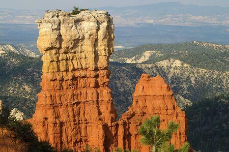 hoodoos: Hoodoos in Bryce Canyon Stock Photo