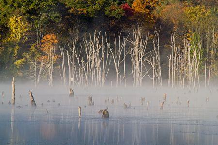 Eerie morning scenery at Monksville Reservoir Stock Photo