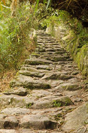 Steep incline on the Inca Trail between Machu Picchu and the Sun Gate  Intipunku , Peru