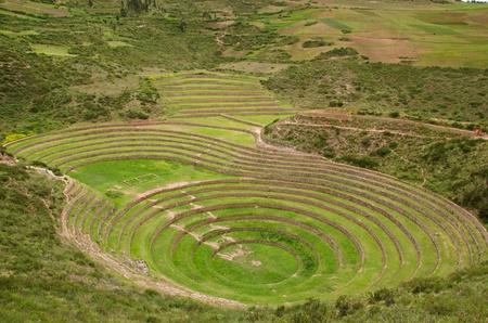 ウツボ、ペルーでの円形の農業インカのテラス 写真素材