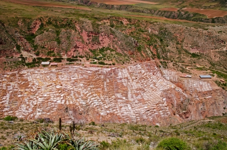 evaporate: The Salt pans at Maras  Salineras de Maras , Peru consists of more than 3,000 shallow pools that evaporate oversaturated water from a nearby spring  Qoripujio   The result is - salt