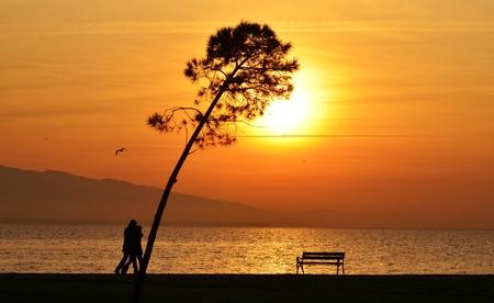 puesta de sol: Puesta de sol en el mar y los �rboles, la gente caminando de playa