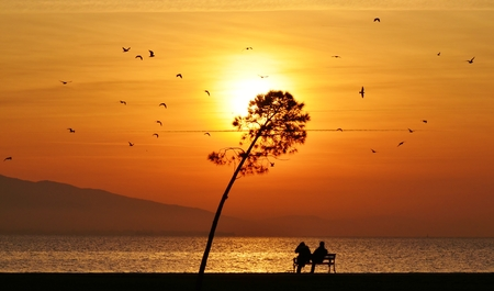 orange sunset: Sunset on sea and tree, people sitting on a bench under sunset, young couple sitting on a bench under sunset Stock Photo