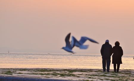 Old Couple Walking Sunset Standard-Bild