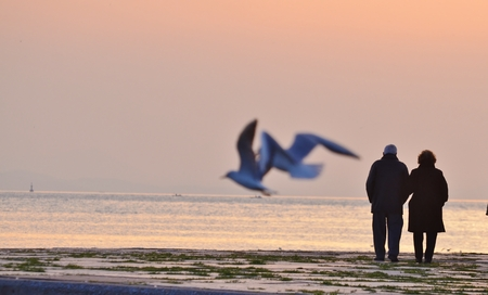 Old Couple Walking Sunset Standard-Bild