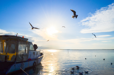Seagulls flying over a cloudy, blue, cloudy sky. There is a fishing boat on the sea. Stock Photo
