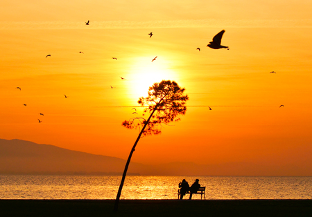 Young couple sitting on bench near seashore at sunset. Sun between clouds and birds flying on the sea, silhouette. Standard-Bild