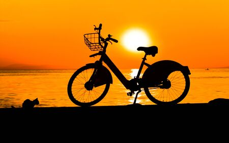 silhouette of bike and a little cat on sunset
