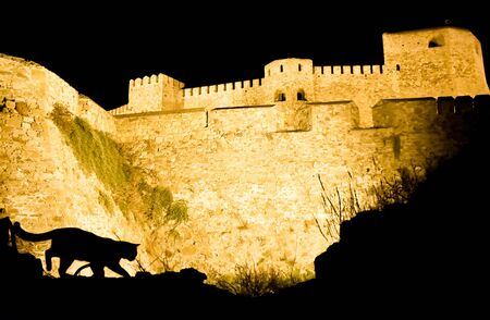 Cat silhouette in front of a old castle.
