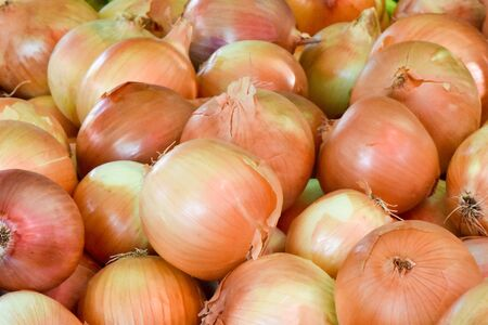 Fresh organic onions for sale at market.