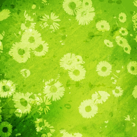 grunge background with daisies