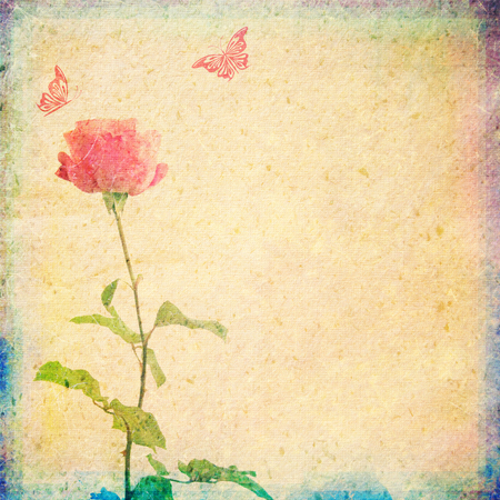 vintage background with rose and butterflies