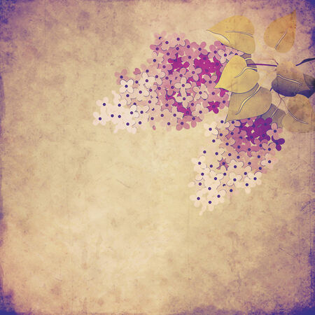 blotchy: vintage background with lilac branch