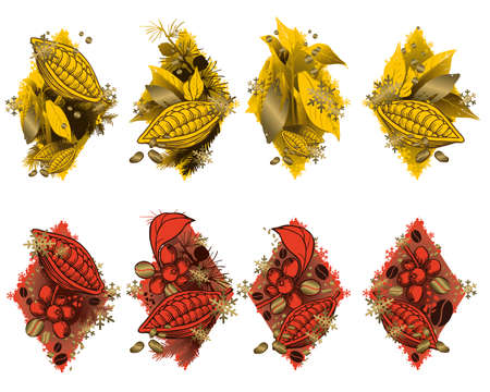 Cocoa beans and berries. Decorative ornaments