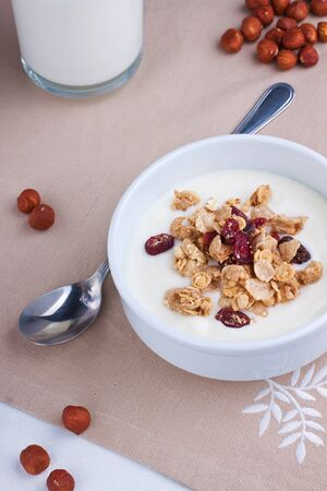 Muesli with yoghurt in a white bowl