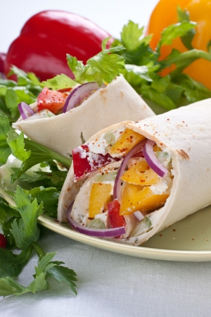 Wrap Sandwich on plate with vegetables Stock Photo - 15707584