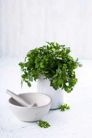 Fresh herbs and a mortar bowl Stock Photo