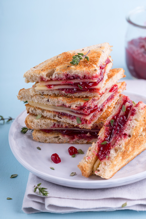 Perfect cheese and cranberry sandwich, close up Stock Photo