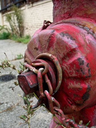 chipped paint: Old fire hydrant with chipped paint being overrun with weeds