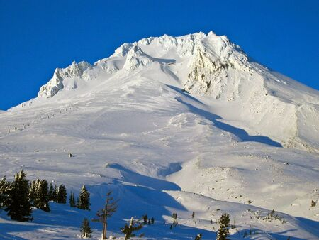 adams: Snowy peak of Mt. Adams against a blue sky with pine trees in the foreground