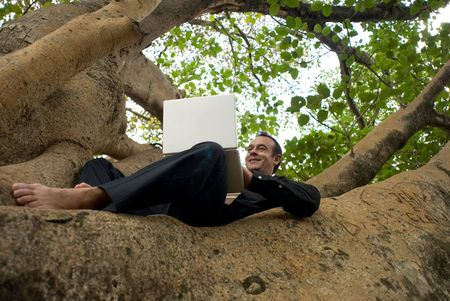 Latin american business executive working on his laptop while sitting in the crook of a tree trunk