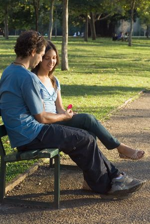 vertically: Couple on a park bench enjoying a romantic moment. He is giving her a flower. Vertically framed shot. Stock Photo