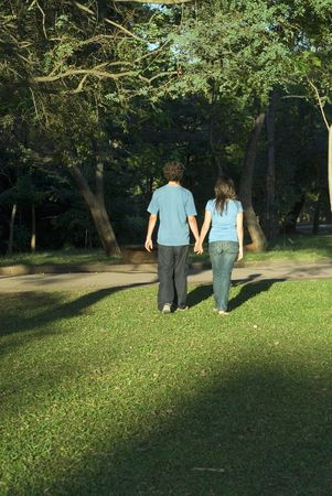 facing away: Young couple walking through a park holding hands on a sunny day. They are facing away and you can see their shadows. Vertically framed photograph