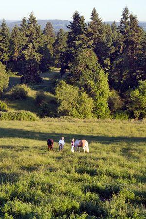 Twee mensen die hun paarden, het praten in een weide van gras, met bomen. - Verticaal framed