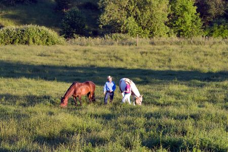 Twee boeren praten, terwijl hun paarden eten in een grasveld. - Horizontaal omlijst