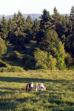 Twee boeren praten, terwijl in een groen gebied van gras, terwijl hun paarden eten. - Verticaal framed