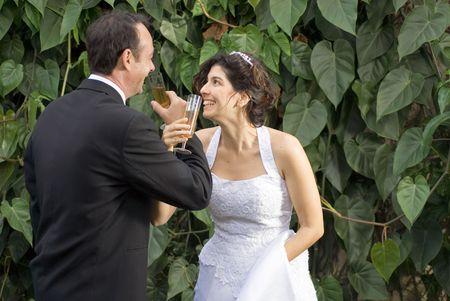 Newly weds drinken, terwijl de overschrijding van wapens, nog in hun bruiloft kleding. - Horizontaal omlijst Stockfoto - 3263909