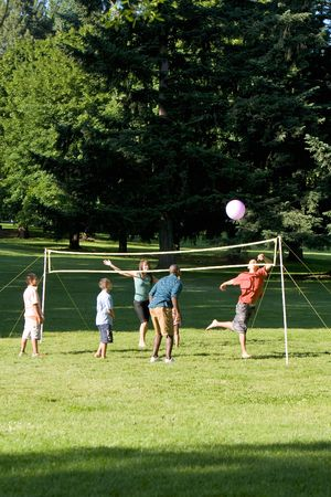 female volleyball: Group playing volleyball in the park. Vertically framed photograph Stock Photo
