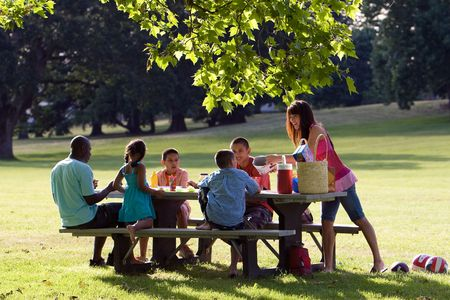 diverse: Family having picnic in the park - Horizontal