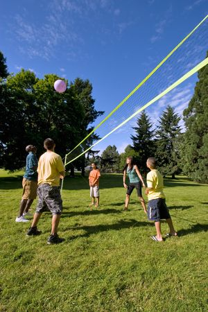A young and happy , playing volleyball with each other outdoors in a park. - vertically framed Stockfoto