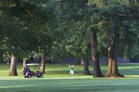 executive courses: A man is standing on a golf course.  He is standing next to a golf cart and is following through on an iron shot.  Horizontally framed shot. Stock Photo