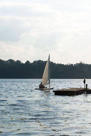 いくつかの湖に一緒にセーリングです。 カメラから離れています。 垂直方向にフレーム ショット。