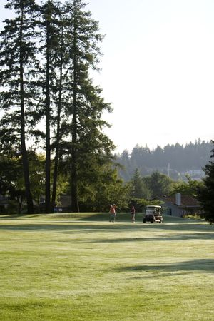 far off: Far off shot of couple playing golf. Vertically framed photo
