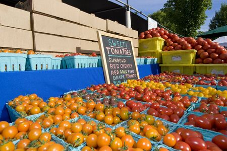 Bins full of tomatoes next to a sign at a farmers market. Horizontally framed photo.
