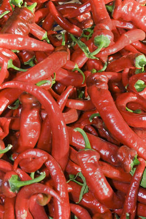 vertically: Red chili peppers. Vertically framed photo. Stock Photo