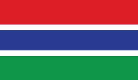 gambia: flag of gambia vector icon illustration Illustration