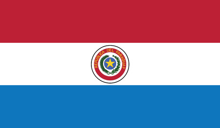 flag of paraguay vector icon illustration